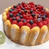 charlotte-aux-fruits-rouges